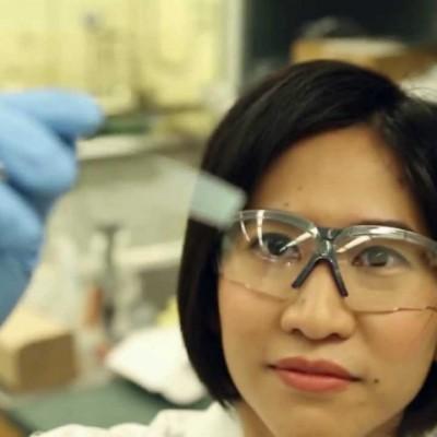 Jennifer Chen<br>Nanomaterials