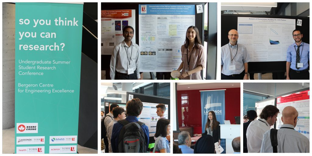 So You Think You Can Research? Conference