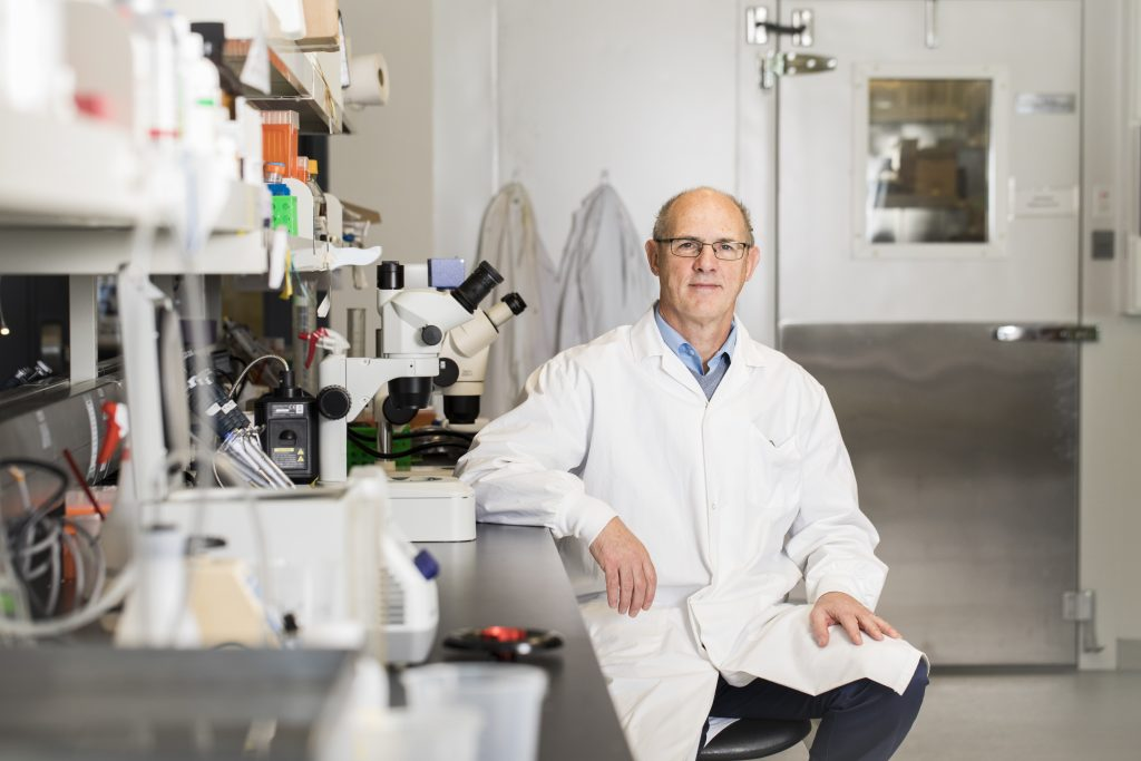 Prof. John McDermott in his lab at York U