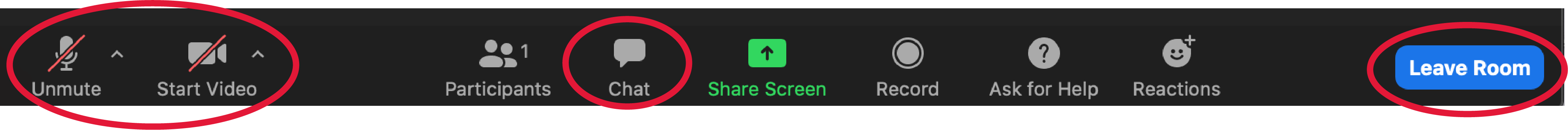 Zoom tool bar navigation. Unmute, Start Video, Chat, and Leave Room buttons circled.